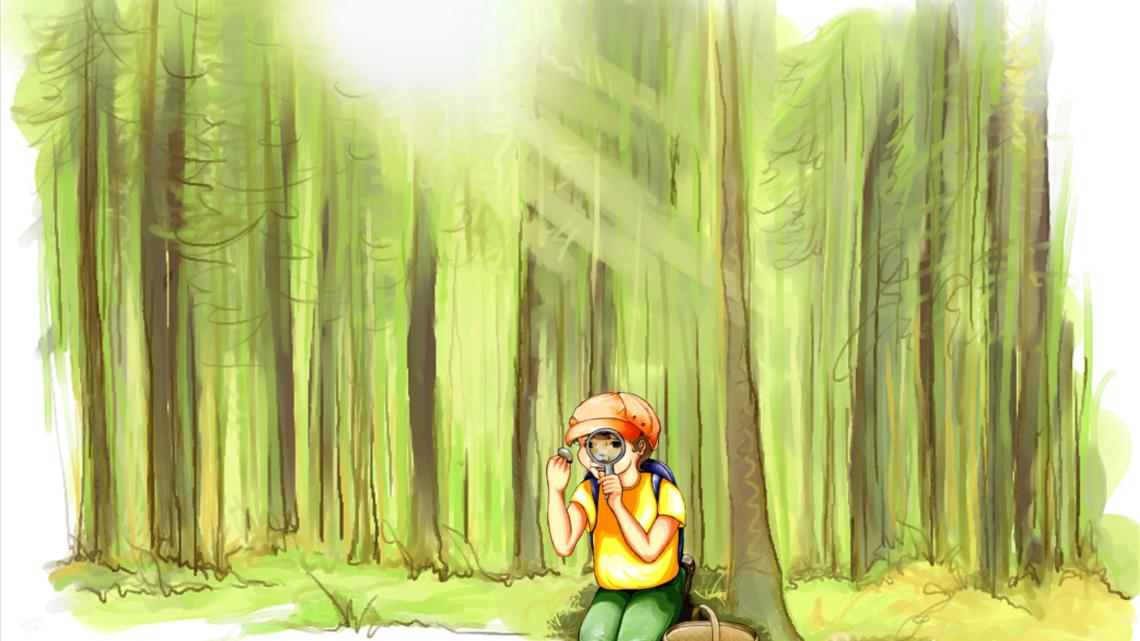 Illustrations dans un livre pour Enfant